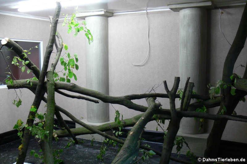 Klettergerüst Aus Baumstämmen : Eltern packten beim bau mit an neues klettergerüst für den
