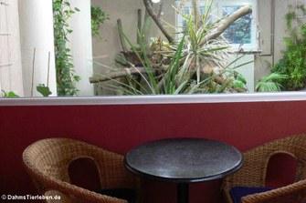 Blick von der Sitzecke in das Terrarium