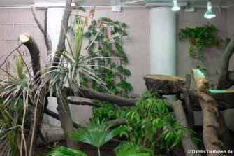 Bepflanzung rund um das Klettergerüst