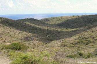 Blick über den Arikok Nationalpark