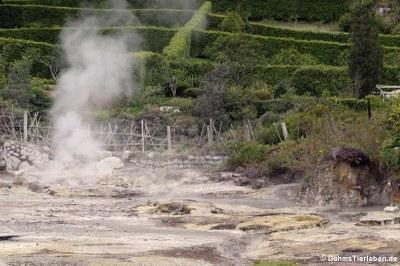 Caldeiras (Dampfquelle) am Lagoa das Furnas