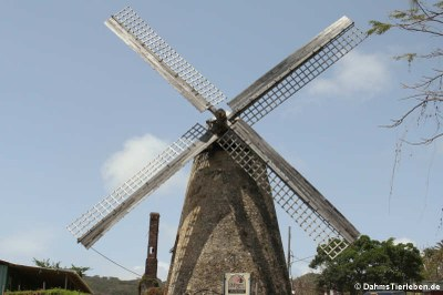 Morgan Lewis Sugar Mill, die einzige vollständig erhaltende Mühle