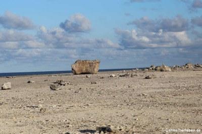 Küste am Boka Onimá