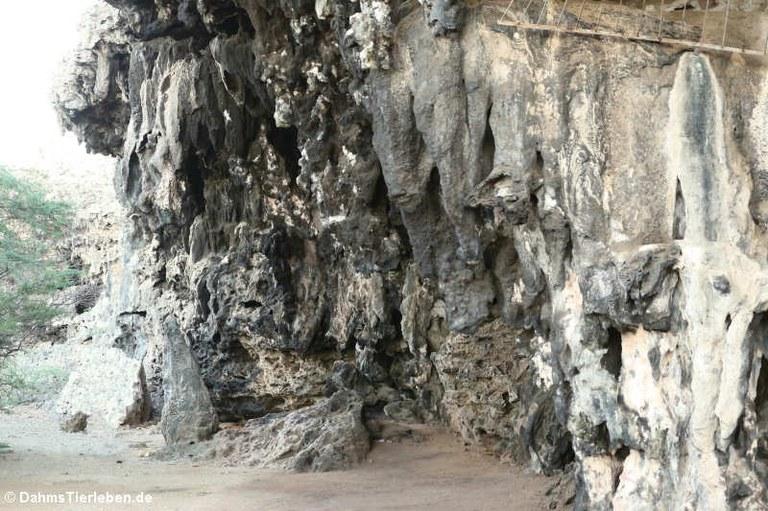 Felswand in Boka Onimá