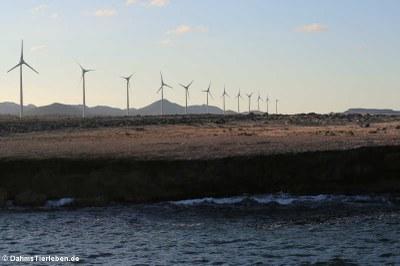 Windmill Park, nahe Boka Onima