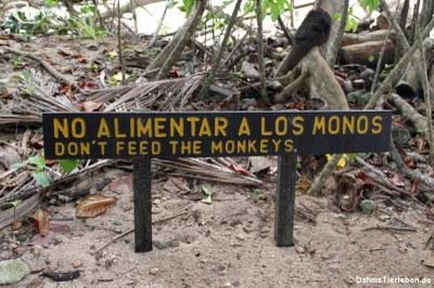Ein deutlicher Hinweise, die Affen nicht zu füttern