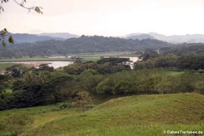 Blick auf den Rio Tárcoles