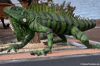 Das Modell eines Grünen Leguans vor einem Restaurant in Willemstad