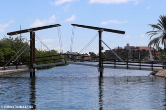 Prinzessin-Amalia-Brücke (Prinses Amalia brug)