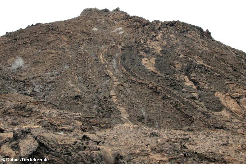 Spuren der Lavaströme