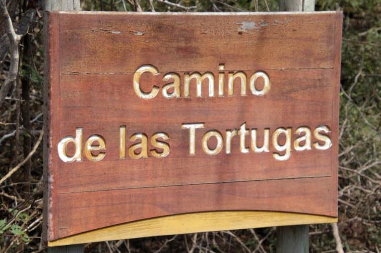 Camino de las Tortugas
