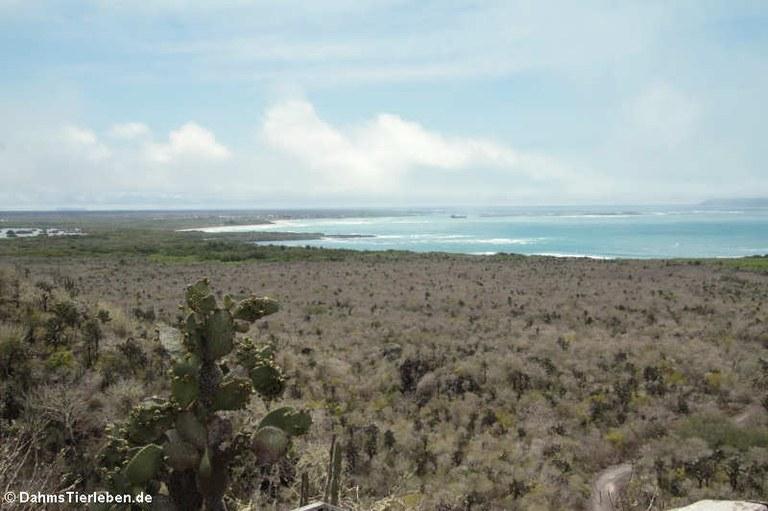 Blick vom Cerro Ochilla