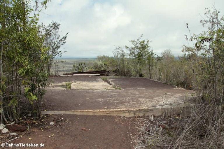 Standort von El Radar
