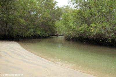 Hinter dem Majagua-Tunnel befindet sich eine kleine Lagune