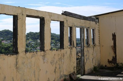 Die Ruine von Fort George