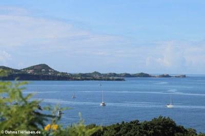 Blick vom Fort George in Richtung Grand Anse Beach und Quarantine Point