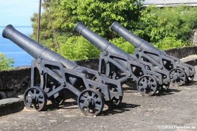 Kanonen auf Fort George