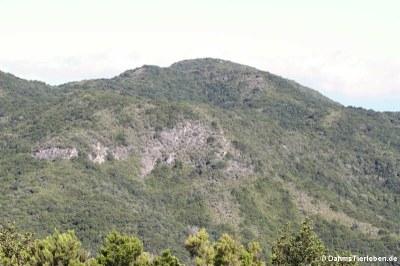 Wunderbere Aussichten auf grüne Hügel ...