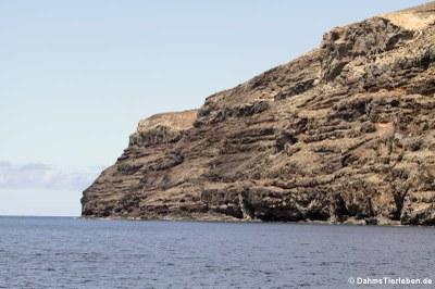 Ein Beispiel für die steilen Meeresküsten
