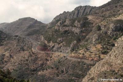 typischer Straßenverlauf auf La Gomera