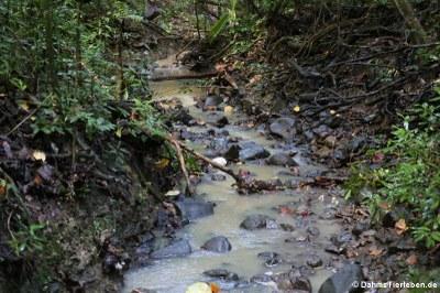 Eindrücke vom Union Nature Trail
