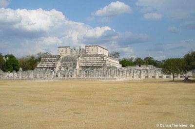Der Tempel der Krieger (Templo de los Guerreros)