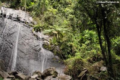 Wasserfall La Coca