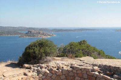 Blick auf den südlichen Teil von Caprera