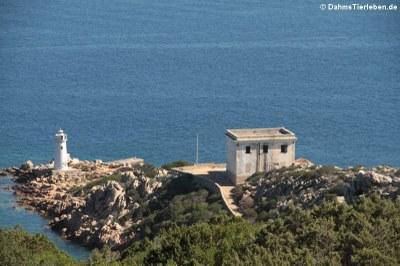 Blick von der Festung hinunter zum Leuchtturm