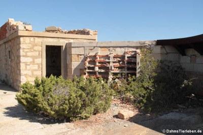 Reste der Geschützanlage