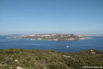 Blick auf die Isola di Santo Stefano