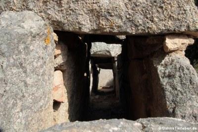 Blick in die Grabkammer
