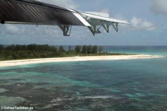 Anflug auf Bird Island
