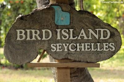 Willkommen auf Bird Island