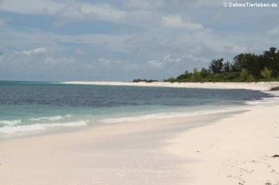 Die Insel ist umgeben von ...