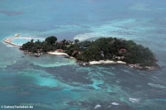 Die Ile Anonyme vor der Küste von Mahé