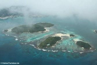 Ile Cachee, Ile au Cerf, Round, Long und Ile Moyenne