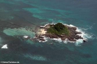 Die Ile aux Rats vor der Küste von Mahé