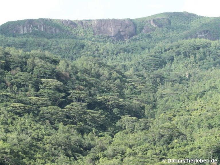 Morne Seychelles National Park