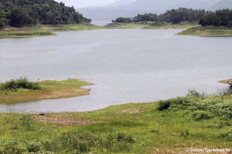 Kaeng-Krachan-Stausee