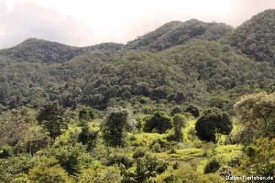 Blick in den Kui Buri National Park