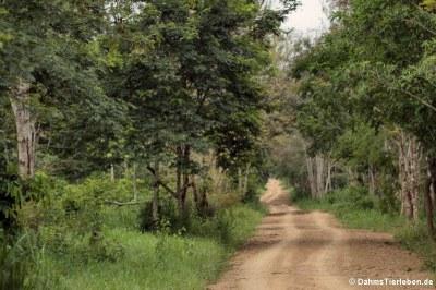 Einfahrt in den Kui Buri National Park
