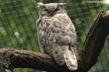 Tierpark Berlin-Friedrichsfelde