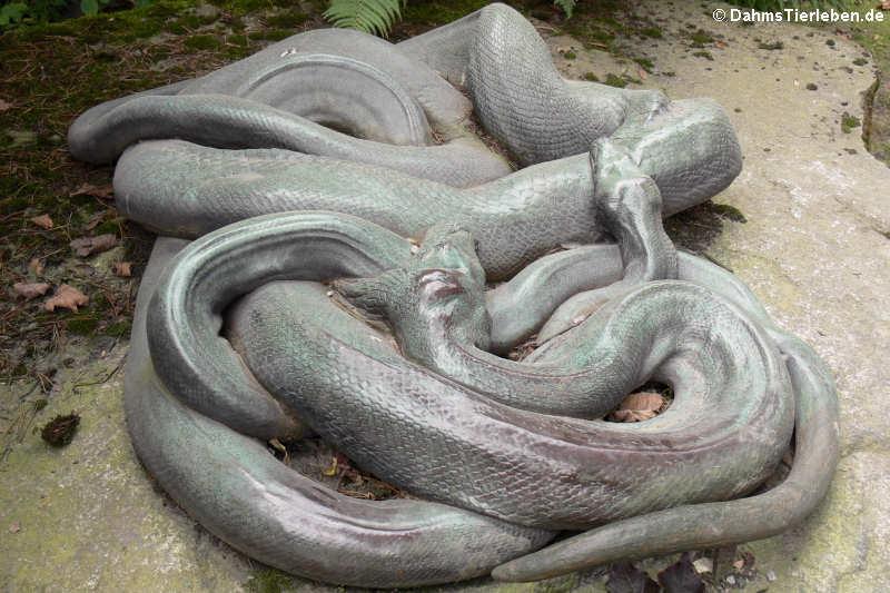 Abguss zweier Riesenschlangen