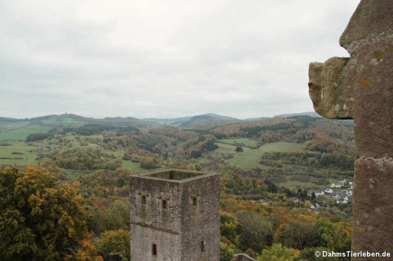 Blick über den Wehrturm