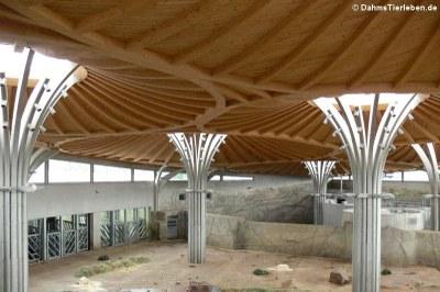 Die Deckenkonstruktion
