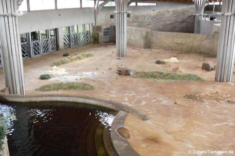 Innenanlage für Asiatische Elefanten
