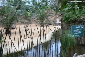 Krokodilgehege im Hippodom