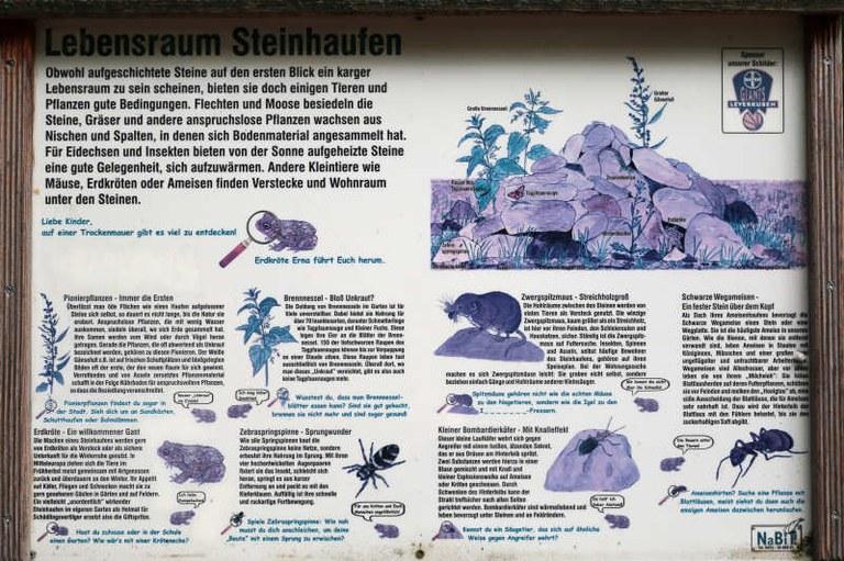 Lebensraum Steinhaufen