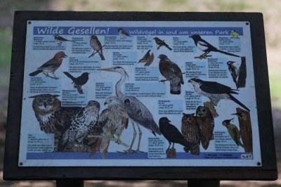Hinweis auf Wildvögel